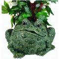 "PLANTER, 10.5""TOAD NATURAL GREEN"